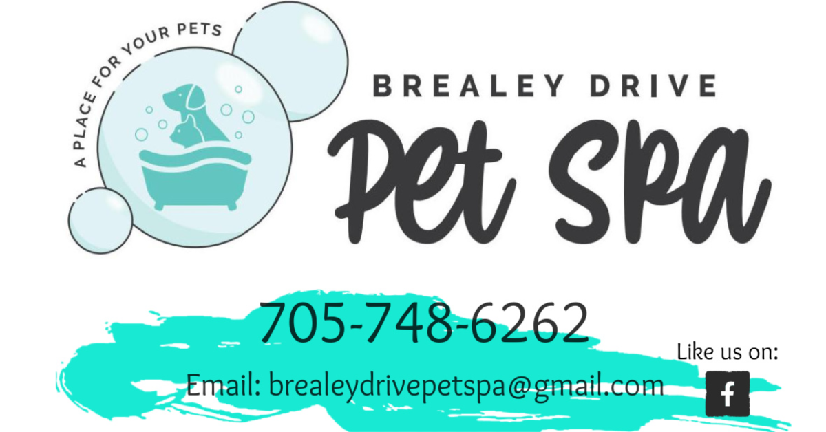 Pet Spa contact page