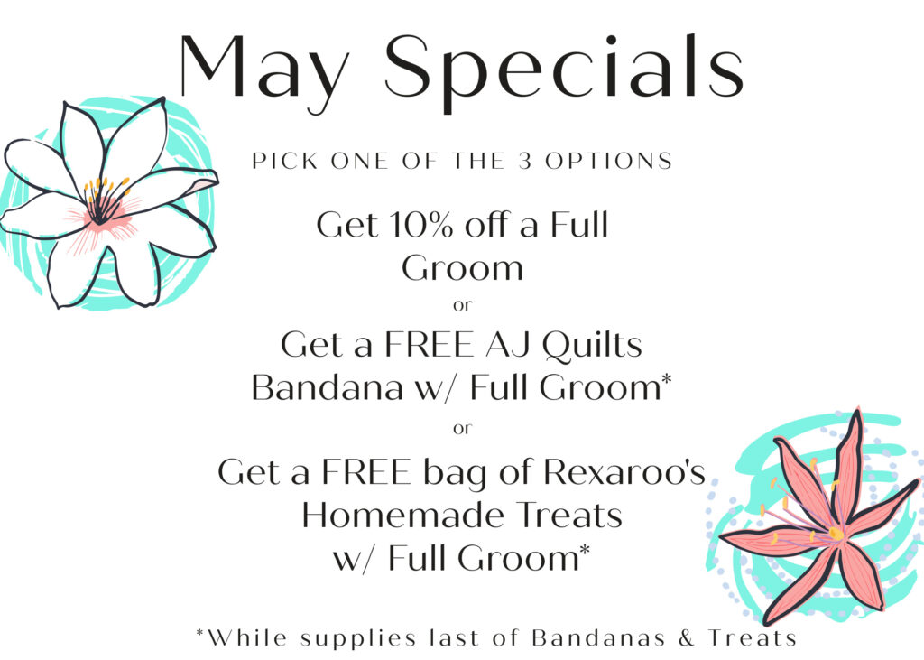 Check out our May Specials